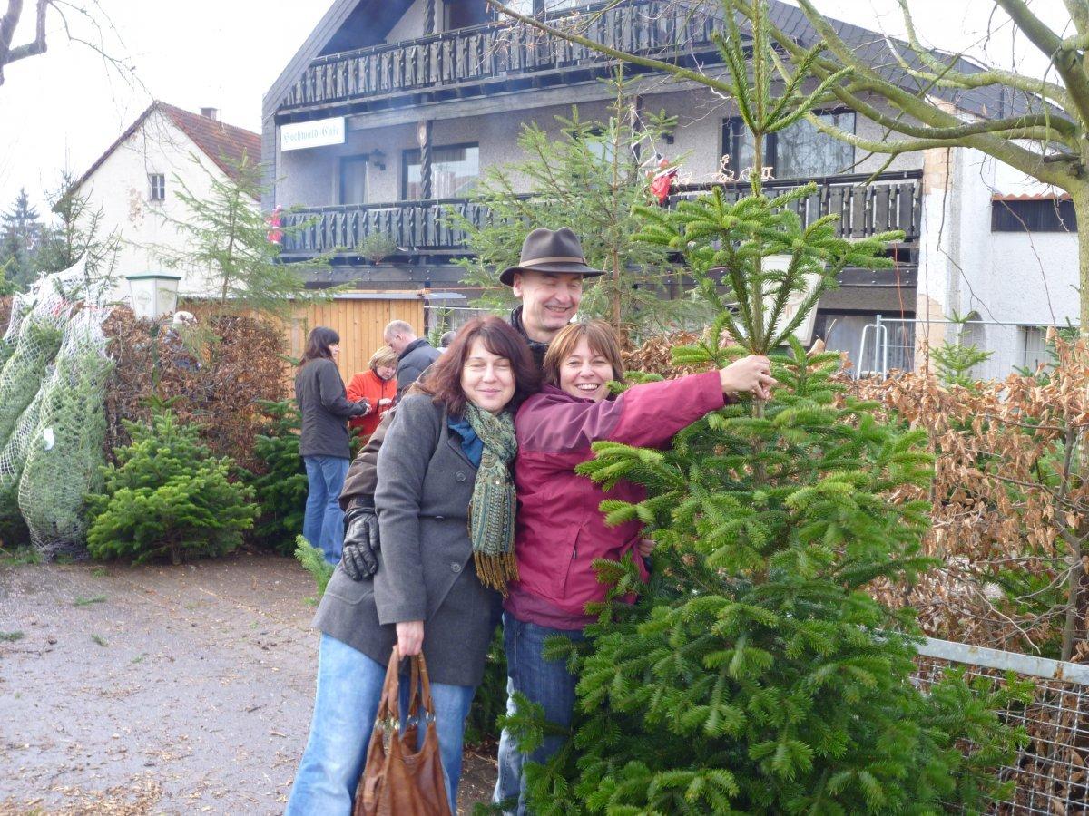 weihnachtsbaumverkauf-2011-004