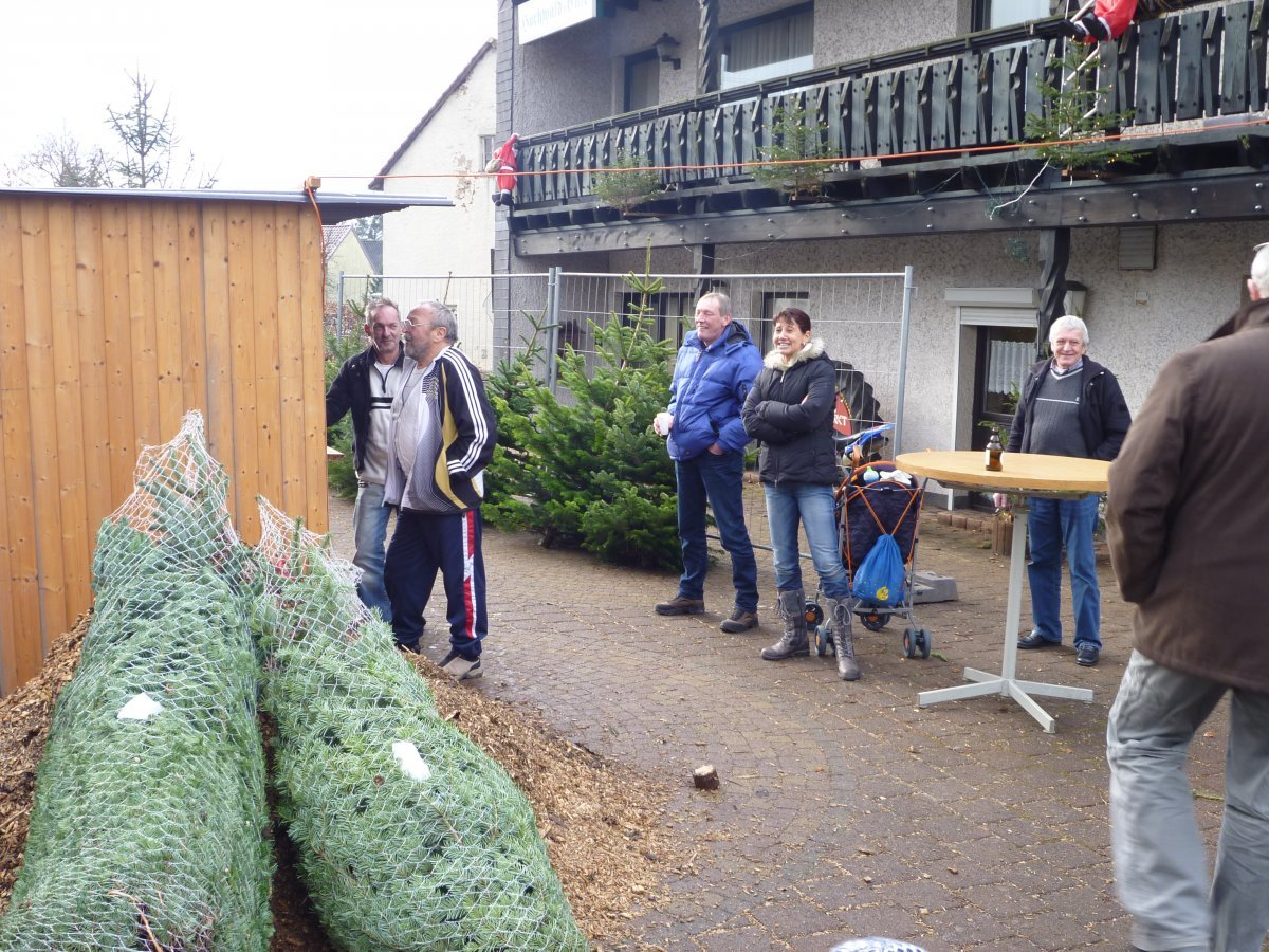 weihnachtsbaumverkauf-2011-006