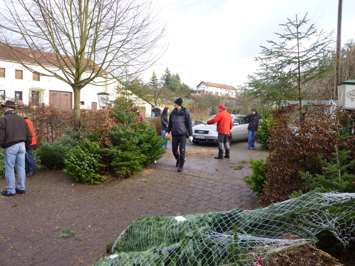 weihnachtsbaumverkauf-2011-012